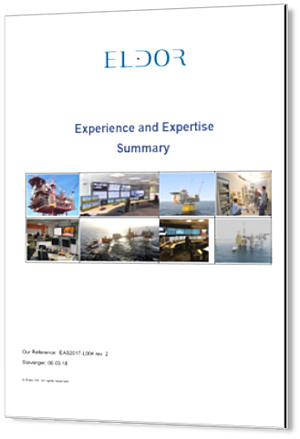 Experience and Expertise Summary_3D